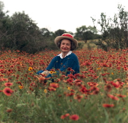 Portrait of Lady Bird Johnson